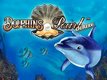 Dolphin's Pearl Deluxe с бонусами Вулкан Старс